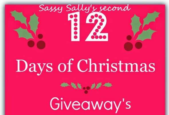 12 days of christmas giveaway bonanza